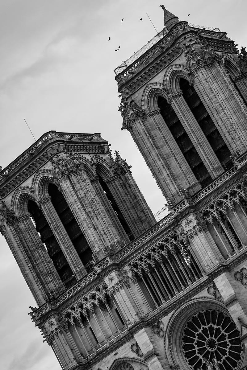 Photo noir et blanc Chute libre de Notre Dame