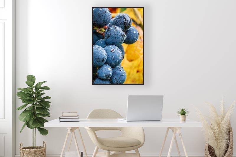 macrophotographie d'art raisins lors des vendanges mis en scène dans un bureau pour la galerie en ligne guillot images