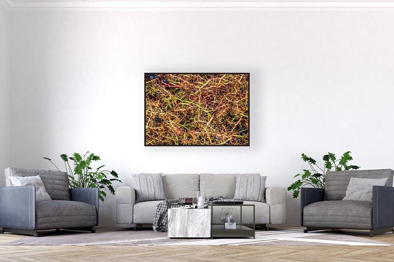 photographie minimaliste art abstrait et épurée. Mise en situation d'un ensemble de ralfes de raisins dans un grand salon avec décoration