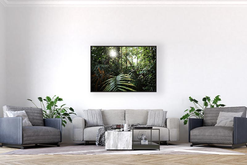 Photographie artistique paysage GUILLOT IMAGES Welcome to the jungle mise en scène dans un bureau