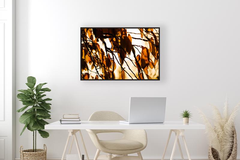 T2 Formes d'automne Mise en scène GUILLOT IMAGES Galerie en ligne photographie d'art