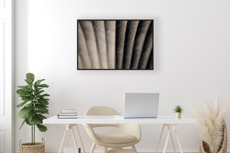 T2 Coquille$ Mise en scène GUILLOT IMAGES Photographie minimaliste